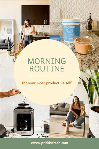 productive morning routine graphic
